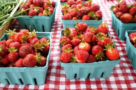 Strawberries galore- White Oak Farm