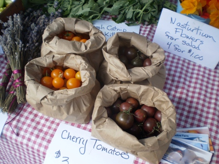 Marsh Meadow Farm - Cherry Chocolate Tomatoes
