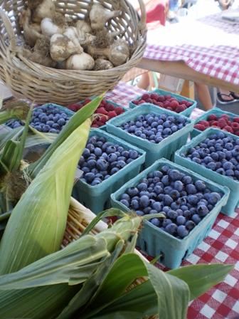 Corn - White Oak Farm