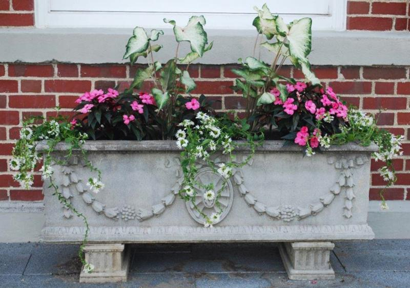 New Canaan Town Hall planter