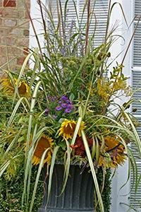 A beautiful fall arrangement created by Sam Harris