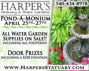 Harper's Pond-A-Monium 2014