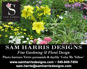 Sam Harris  Designs