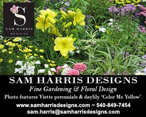 Sam Harris Designs