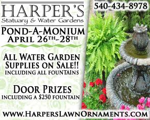 2013 Harpers Pond-a-monium