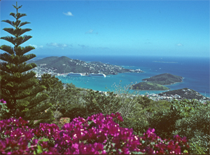 View from the Viette home in St. Thomas.