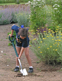 Get children involved in gardening