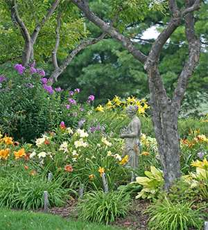 Beautiful summer gardens at Viette's