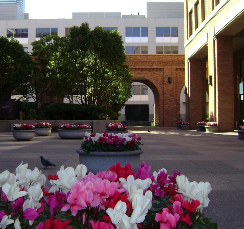 Hills Plaza
