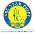 star puppy logo