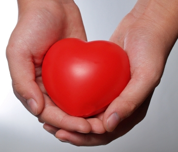 Donations _ Heart Shape Held In Hands