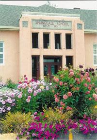 Springdale School