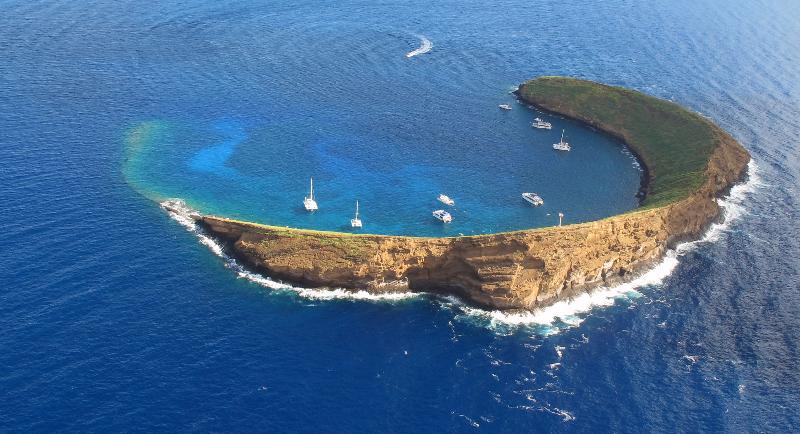 Molokini Reef's End