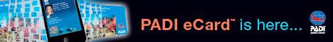 Get your PADI eCard