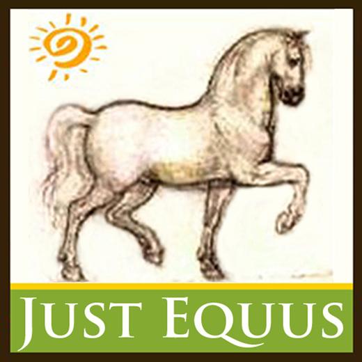 Just Equus Logo