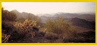 Tucson Wash panorama