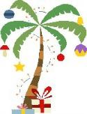 Hawaiian Palm & Presents
