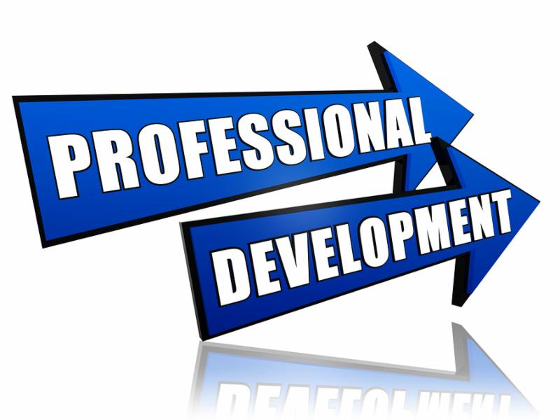 professional development - text in 3d arrows business concept