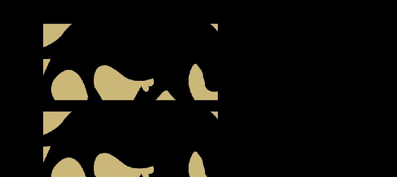 Toro Consulting, Inc.