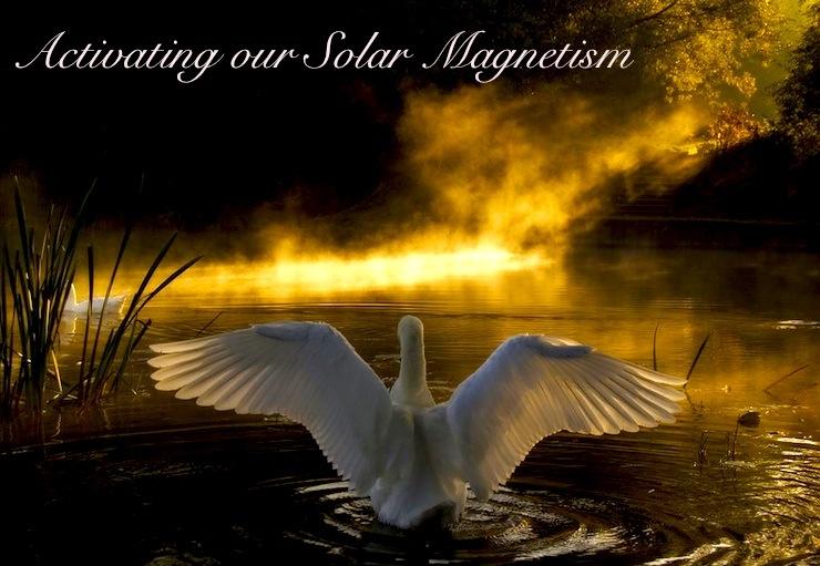 solar swan