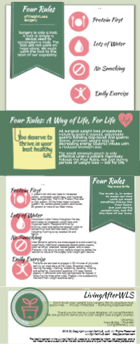 Four Rules Infographic