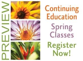 Continuing Education Logo
