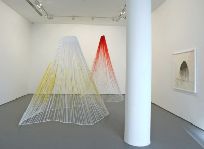 Vidya Gastaldon, Installation at Alexandre Pollazzon