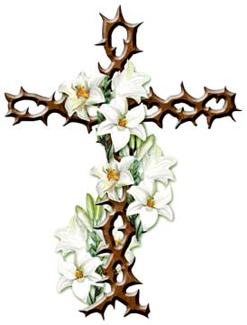 cross of lilly and thorns