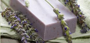 Lavender Soap Hint of Eden