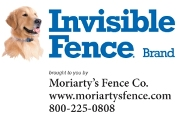 Moriarty Invisible Fence