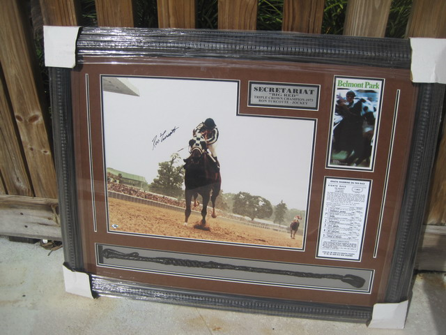 Secretariat Collectible art