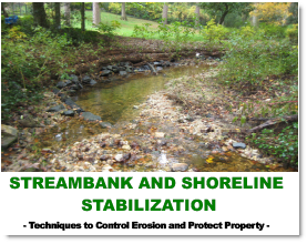Streambank Guidance Doc