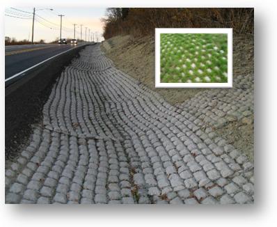 Flexamat Roadside Installation