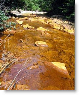 West Virginia to lose NPDES Authority