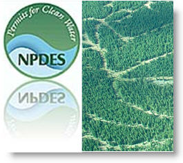 Logging Roads and NPDES