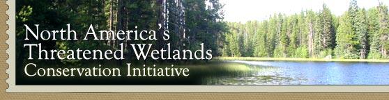 DU Wetlands