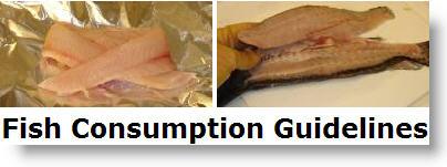 Georgia's New 2009 Fish Consumption Guidelines