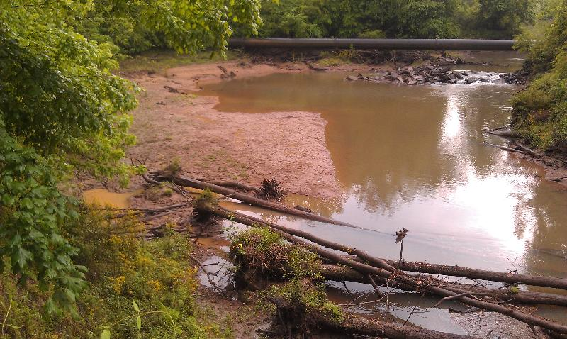 Suwanee Creek 4-17-12