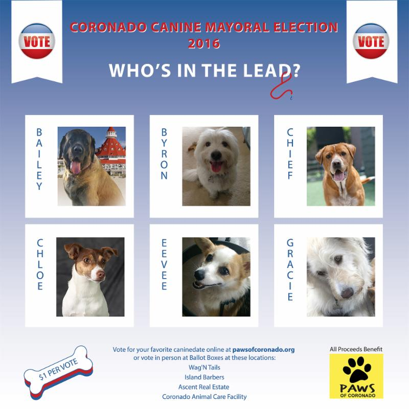 2016 Canine Mayor Poster