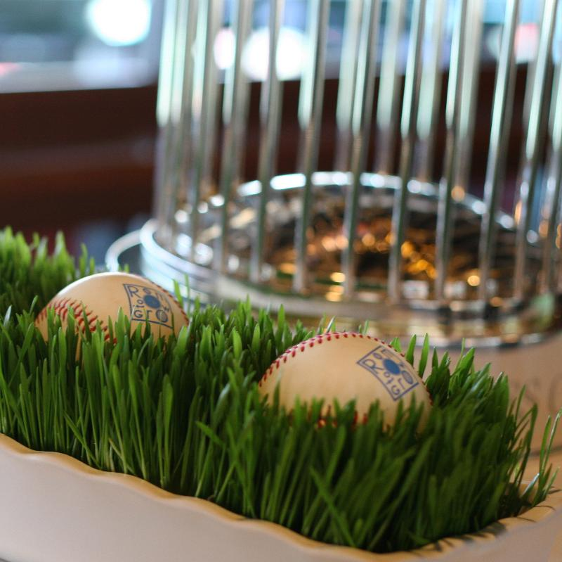 Fenway Park Room to Grow event