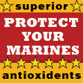 Market America: Protect Your Marines with Powerful Antioxidents
