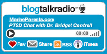 Blog Talk Radio PTSD Chat with Dr. Bridget Cantrell