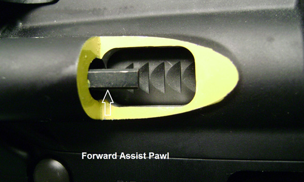 Fwd Assist Detail