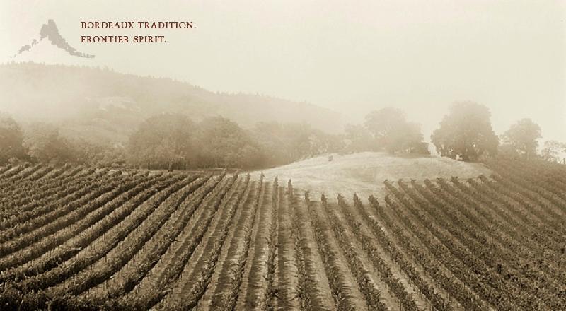Capture Vineyard
