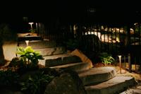 steps with landscape lighting