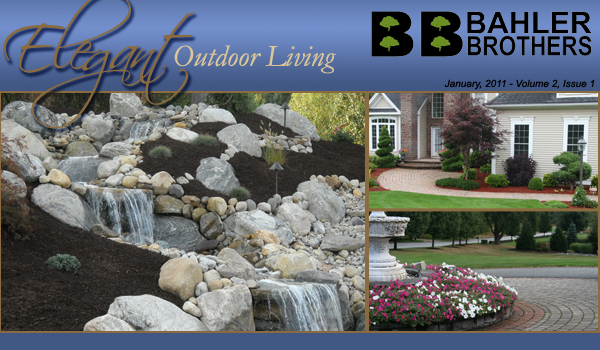Bahler Brothers header showing a water feature and other projects