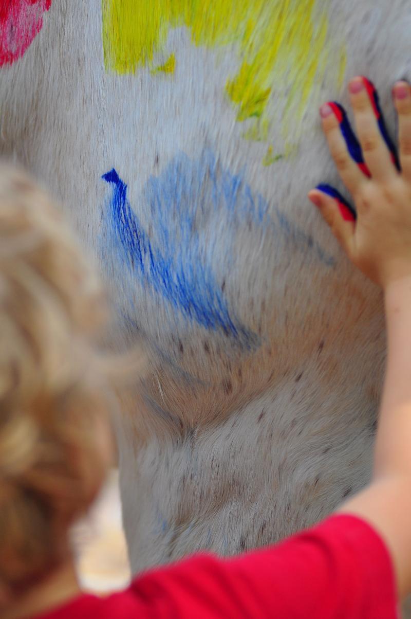 Levi Horse Painting 2012
