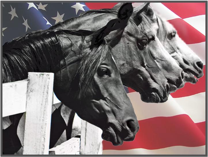 Pegasus Rising Patriotism