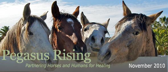 Pegasus Rising November 2010