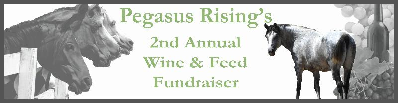 2nd Annual Wine & Feed Fundraiser